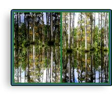 Mirror Images, Cypress Trees Canvas Print