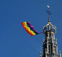 Celebrating Diversity by Hans Bax