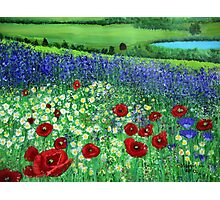 Blooming Field Photographic Print