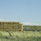 Bales of Hay in Stack by Kim Vaughn Sowards