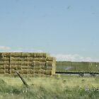 Bales of Hay in Stack by Kim Vaughn Sowards