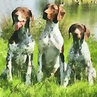 German Shorthaired Pointer Trio by doggylips