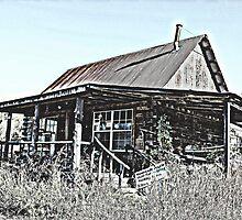Hillbilly Cabin by Betty Northcutt