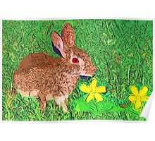 Bunny in yellow clover patch Poster