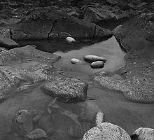 rockpool by codaimages