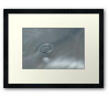 Silver Crown Framed Print