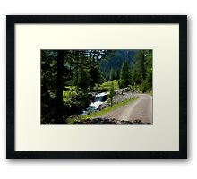 Path along the mountain stream Framed Print