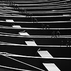 Row, row, row of boats by Javimage
