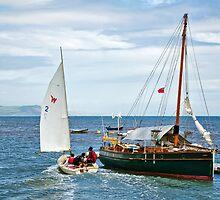 Cutting It Fine ~ Lyme Regis by Susie Peek