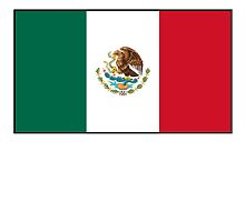 MEXICO, MEXICAN, Mexican Flag, Flag of Mexico, Bandera de México, Pure & simple by TOM HILL - Designer