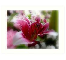 Luscious Lily Art Print