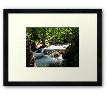 Come And Cool Off Framed Print