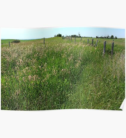 Barbed Wire prairie fence Poster