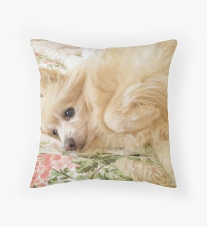 Charley in the Morning  Throw Pillow