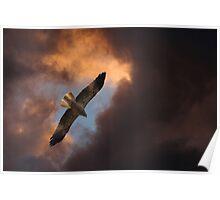 Heavenly Kite Poster