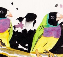 Gouldian Finches Sticker
