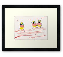 Three Pink Finches Framed Print