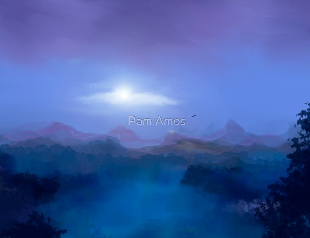 Above the Clouds by Pam Amos