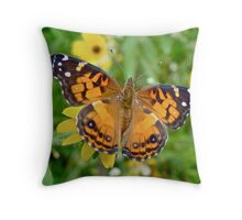 American Lady Butterfly Dorsal View - Vanessa virginiensis Throw Pillow