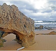 Beachport Limestone Arch  by George Petrovsky