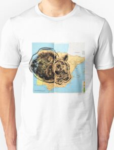 Animal Atlas - Cat World Climates T-Shirt