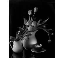 The Beauty of Tulips in Black and White Photographic Print