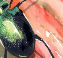 Green Carab Beetle Sticker
