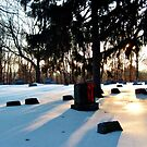 Winter Sunrise At The Cemetery by Jane Neill-Hancock