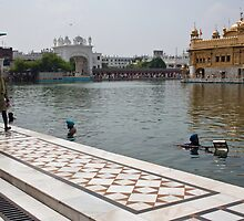 Cleaning the sarovar inside the Golden temple resorvoir by ashishagarwal74