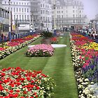 The Flowerbeds of Eastbourne by Larry Lingard-Davis