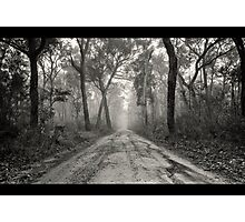 ~ a foggy beginning ~ Photographic Print