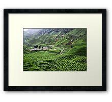 Highland Plantation Framed Print
