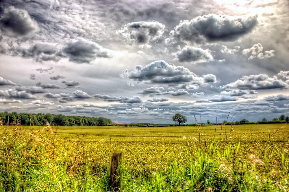 Clouds over farmland by Vicki Field