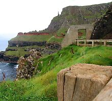 Irish Coast by LizHilton