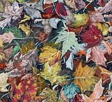 'AUTUMN DEBRIS' by Jerry Kirk