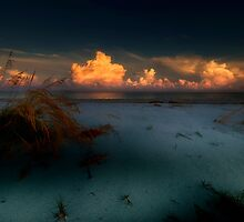 first light by james smith