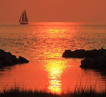 Red Sunset Sail by Roupen  Baker