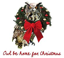 Owl Be Home For Christmas Photographic Print