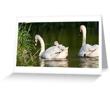 The Archers out and about Greeting Card