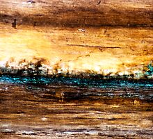 Wood Grain Stains 9 by Scott  Cook