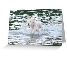 Wet Time! Greeting Card
