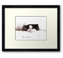 Between the sheets Framed Print