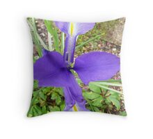 Royal Blue Iris  Throw Pillow