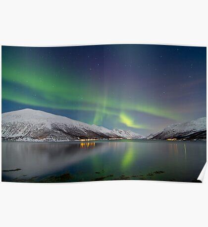 Aurora Borealis at Kattfjord Poster
