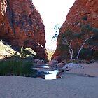 Simpsons Gap,Larapinta Trail, West McDonald Ranges Northern Territory by Virginia  McGowan