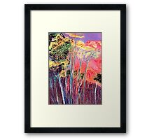 In The Colourful Woods Framed Print