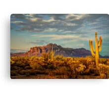 The Desert Golden Hour Canvas Print