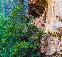 Canyon Wall by BGSPhoto