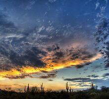 Western Skies  by Saija  Lehtonen
