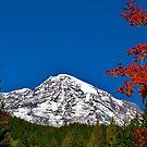 Fall Glory at Mt. Rainier by Nancy Richard
